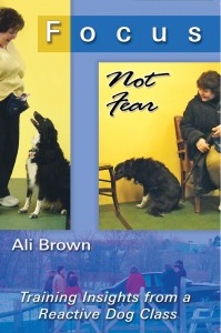 Cover image of the book, Focus Not Fear