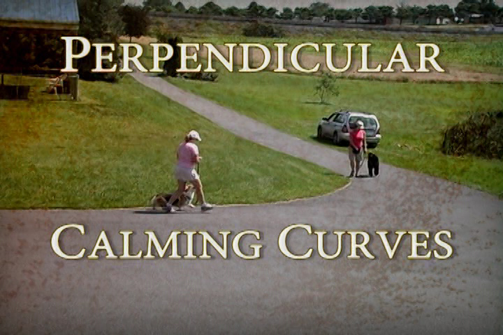 From Reactive Dog Classes DVD -- example from Perpendicular Calming Curves