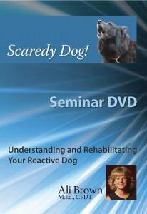 Cover of the Scaredy Dog! Seminar DVD