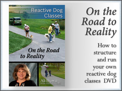 Reactive Dog Classes -- On the Road to Reality