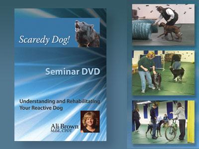 Scaredy Dog Seminar DVD