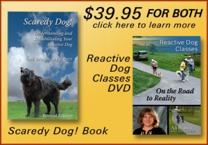 Scaredy Dog Book and Reactive Dog Classes DVD for only $39.95