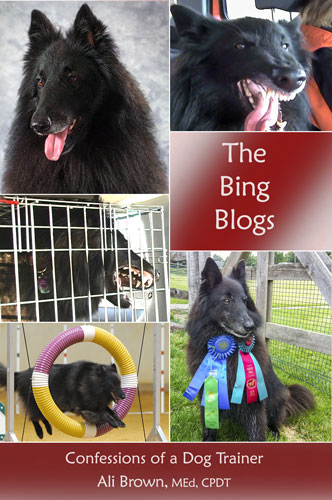 The Bing Blogs, Alternate Cover Image